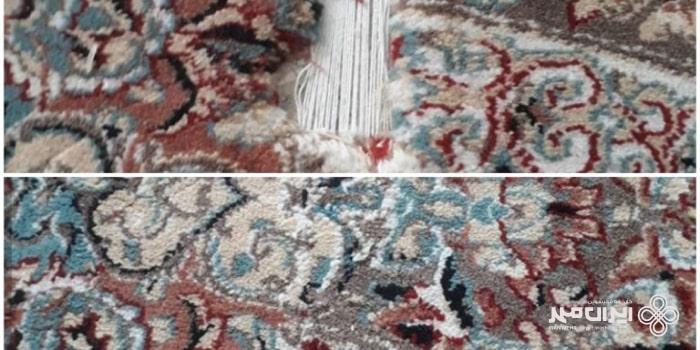 پوسیدگی فرش